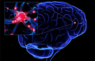Quan és indicat el Neurofeedback